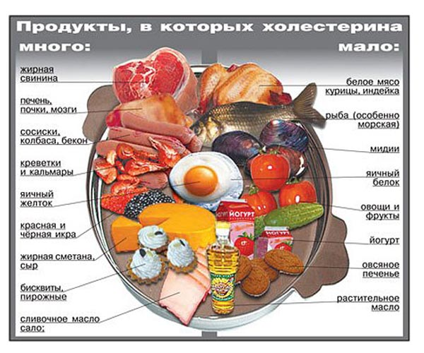 список продуктов с холестерином