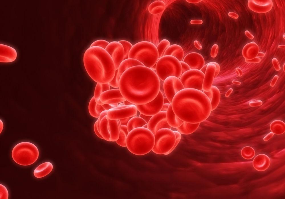 Красный клевер лечебные свойства от холестерина, настойка для сосудов