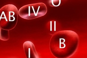 Группа крови 2 положительная: характеристика