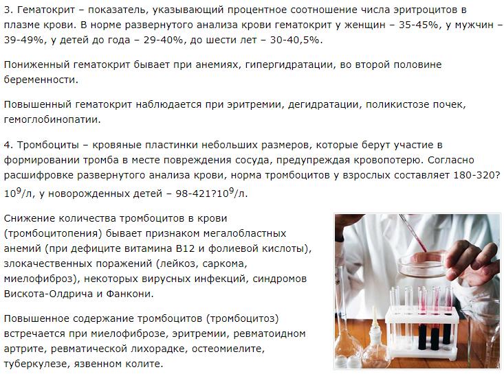 Общий анализ крови развернутая формула
