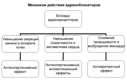 adrenoblokatory