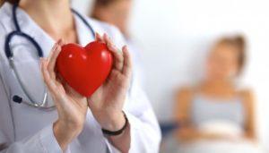 Границы Сердца При Перкуссии