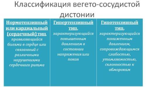 vsd-vidy-1