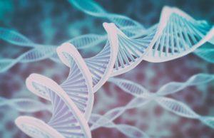 Генетический Анализ Крови