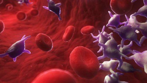 Увеличение тромбоцитов в крови снижение гемоглобина thumbnail