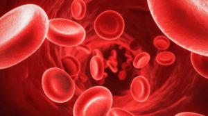 Среднее содержание гемоглобина в эритроците: какова норма, причины отклонений, как лечить
