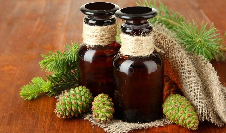 Сосновые шишки: лечебные свойства и противопоказания. Настойка от инсульта, варенье