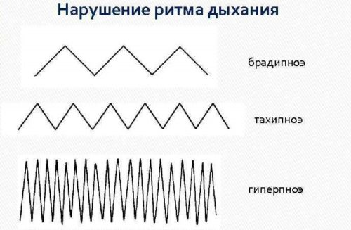 ritmy dyhanija