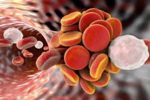 Тромбоциты в крови